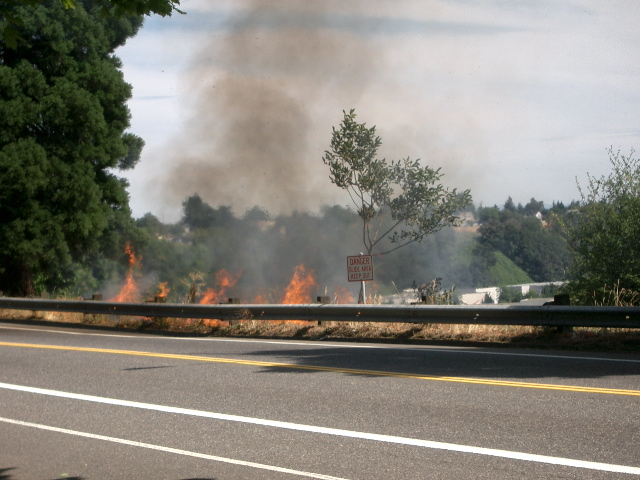 Brush fire in Portland 8/1/03